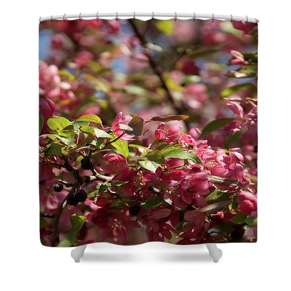 Crabapple In Spring Section 4 Of 4 Shower Curtain