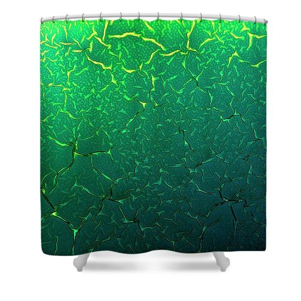 Cracks Under Microscope Shower Curtain