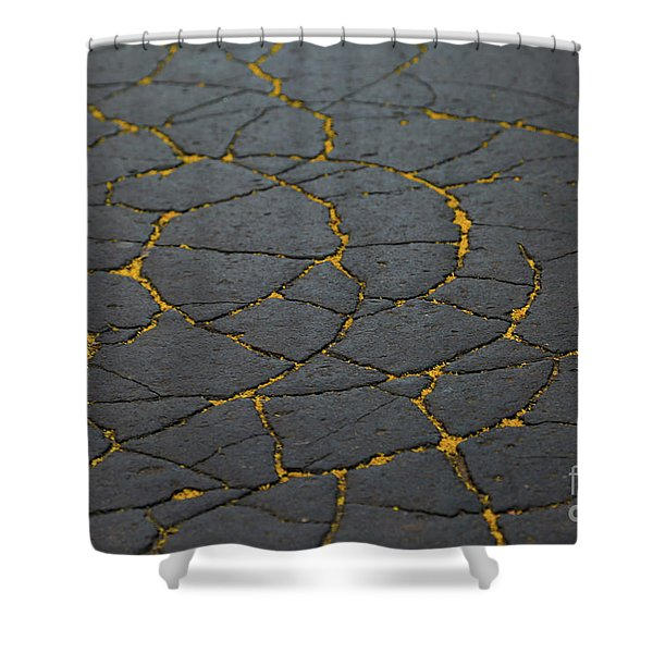 Cracked #11 Shower Curtain