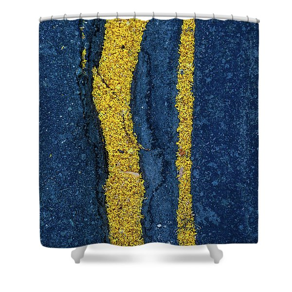 Cracked #9 Shower Curtain
