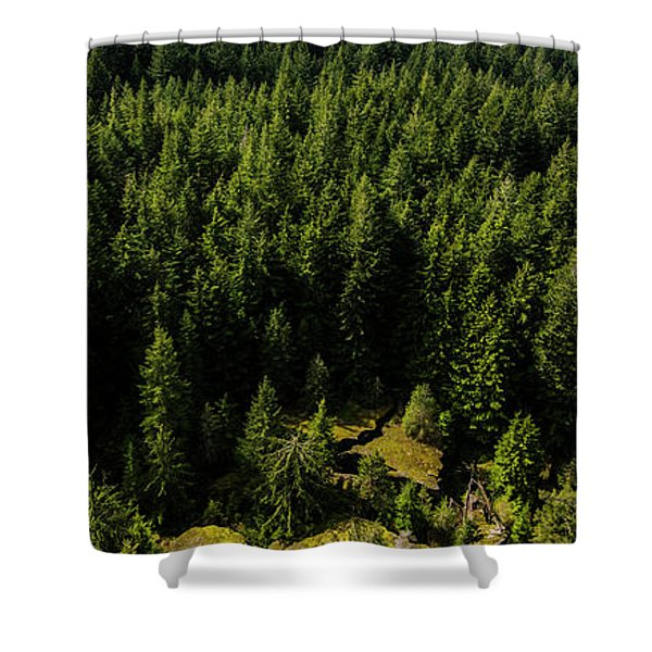 Cracked Rock In The Woods Shower Curtain