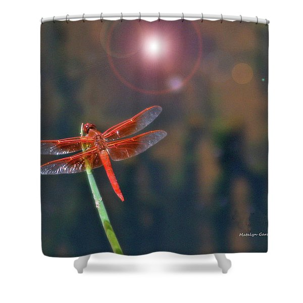 Crackerjack Dragonfly Shower Curtain