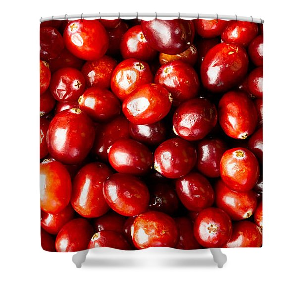 Cranberries Foodie Phone Case Shower Curtain