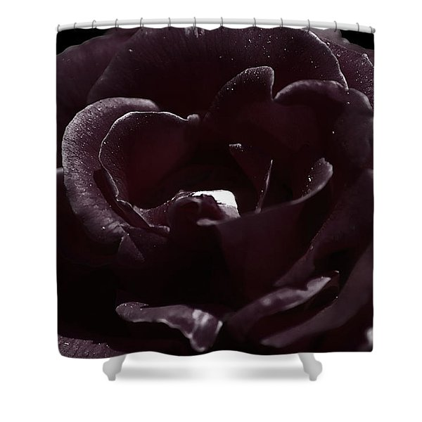 Cranberry Rose Shower Curtain