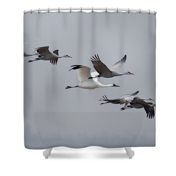 Cranes Flying Shower Curtain