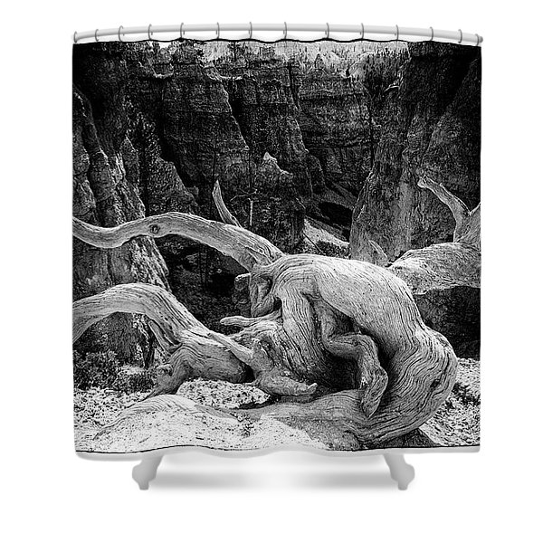 Creatures Of Bryce Canyon Shower Curtain