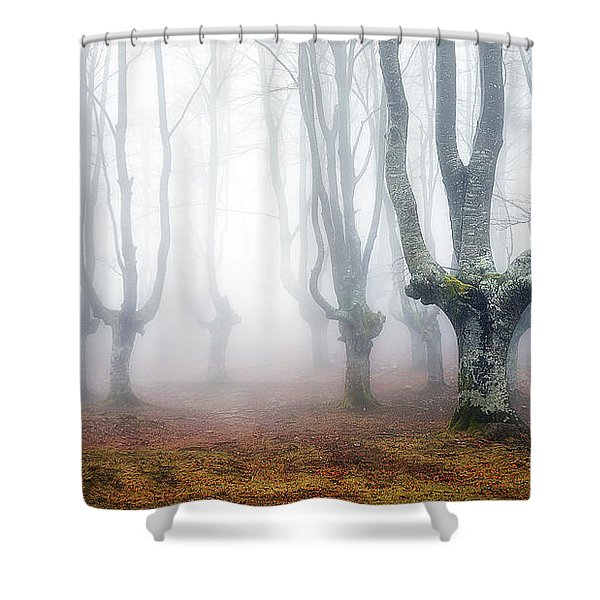 Creatures Of Egirinao Shower Curtain