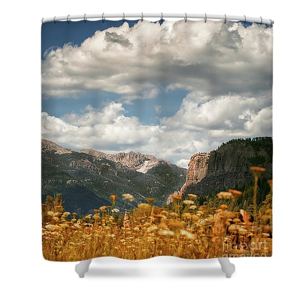 Creede Shower Curtain