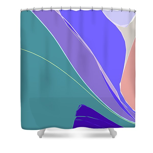 Crevice Shower Curtain