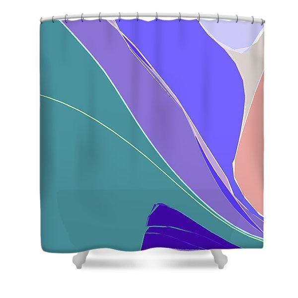 Crevice Shower Curtain