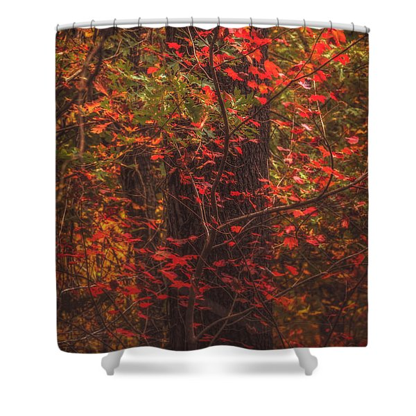 Crimson Fall Shower Curtain