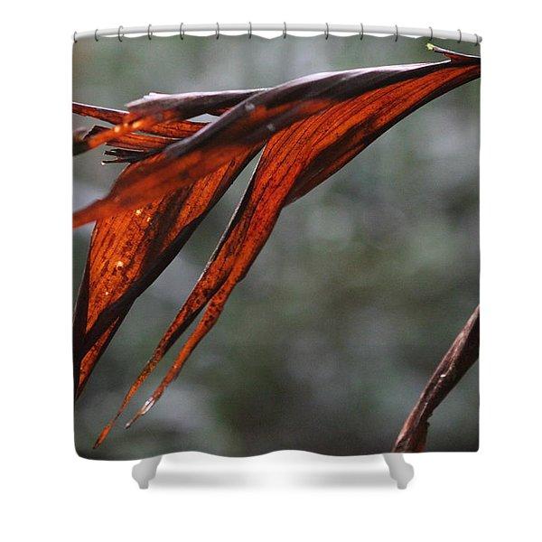 Crimson Leaf In The Amazon Rainforest Shower Curtain