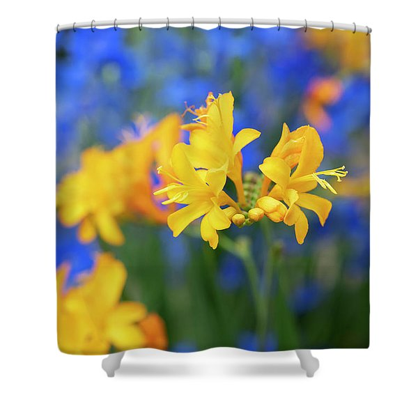 Crocosmia Pauls Best Yellow Flower Shower Curtain
