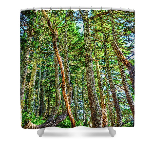 Crooked Trees Of Mt Roberts Shower Curtain