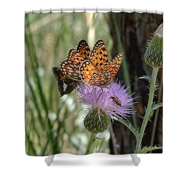 Crowded Thistle Shower Curtain