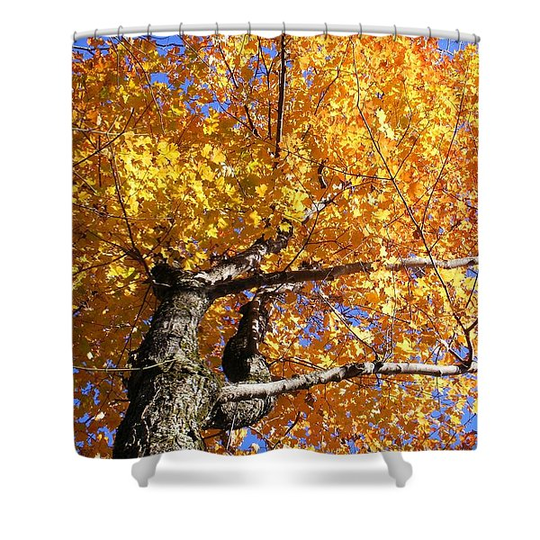 Crown Fire Shower Curtain