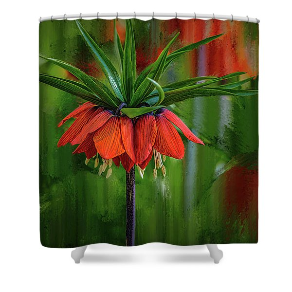 Crown-imperial Abstract #h5 Shower Curtain