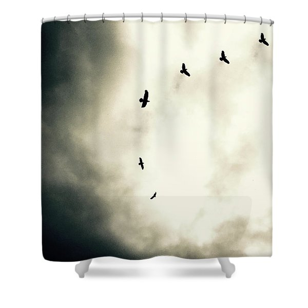 Crows On Christmas Eve 1 Shower Curtain