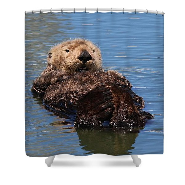 Cuddle Bunches  Shower Curtain