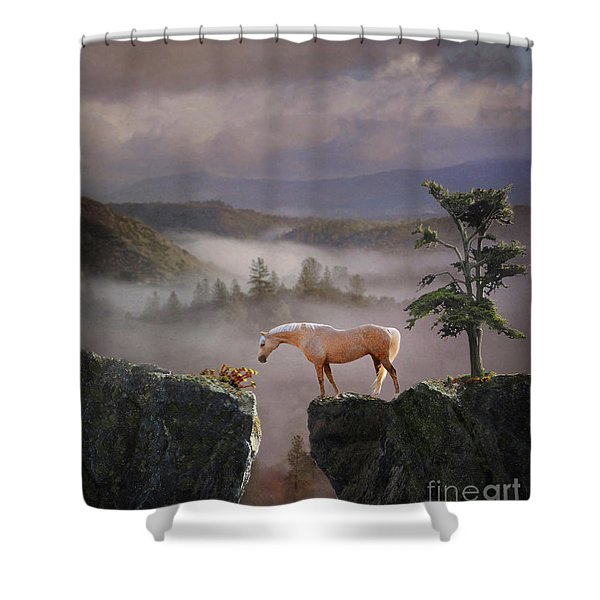 Shower Curtain featuring the photograph Curiosity by Melinda Hughes-Berland