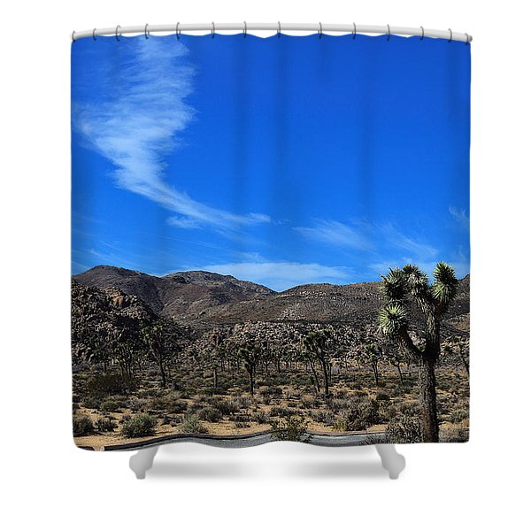 Curve On Road Curve In Sky Shower Curtain