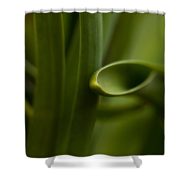 Curves Of Nature Shower Curtain