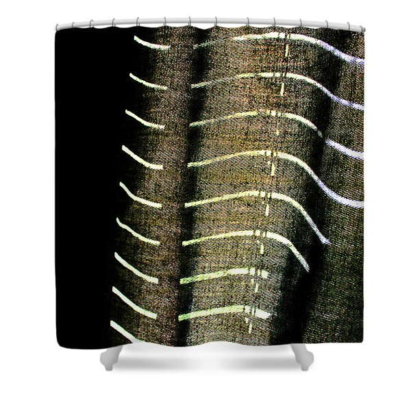 Curvilinear Shower Curtain