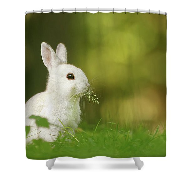 Cute Overload Series - Happy White Rabbit Shower Curtain