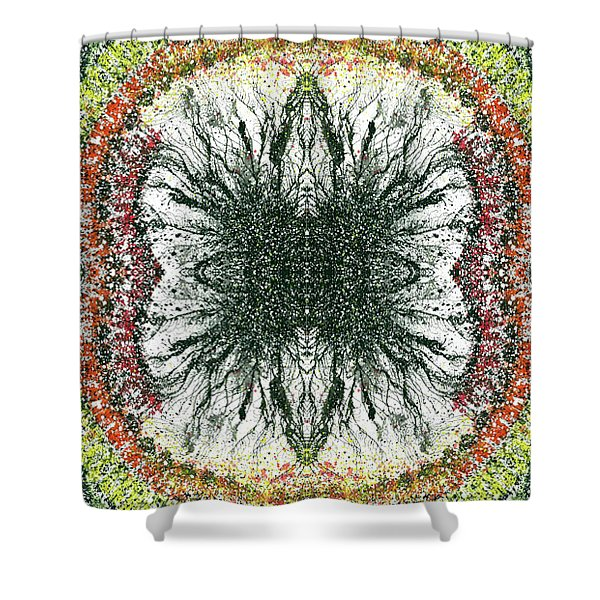 Cymatics Geometry #1550 Shower Curtain