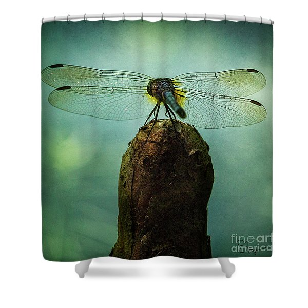 D4maureen Shower Curtain
