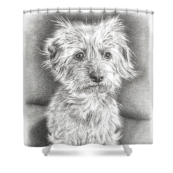 Dachshund Maltese Shower Curtain