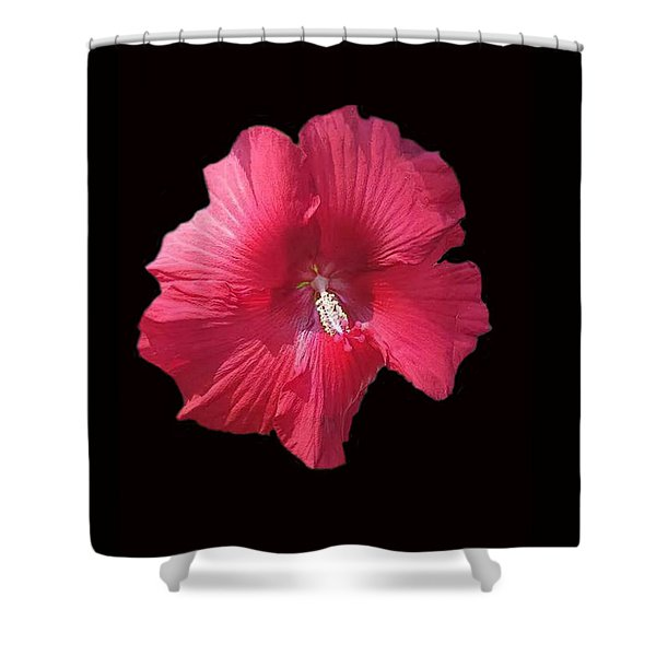 Dads Hibiscus Shower Curtain