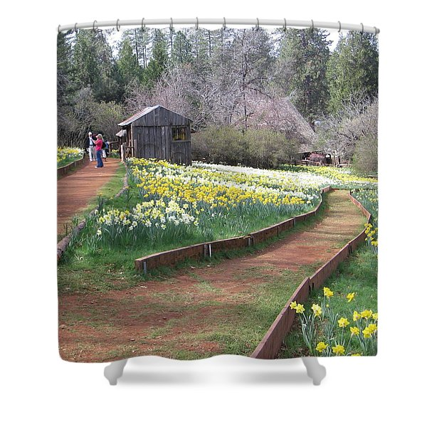 Daffodil Hill Pathway Shower Curtain