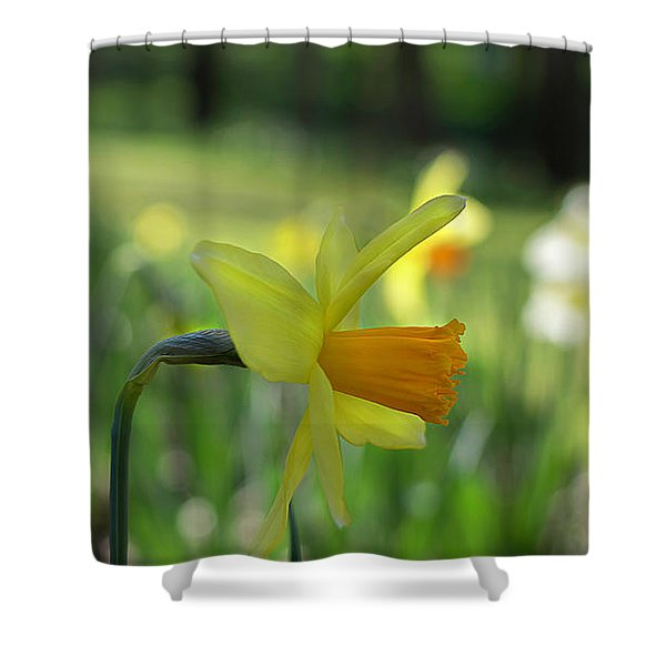 Daffodil Side Profile Shower Curtain
