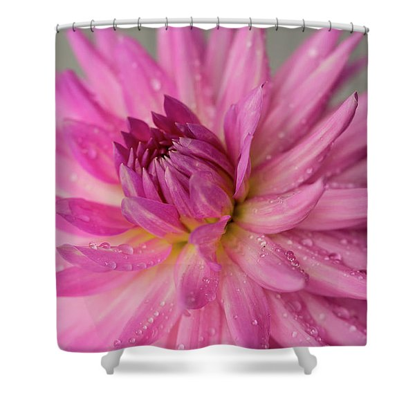 Shower Curtain featuring the photograph Dahlia After The Rain by Mary Jo Allen