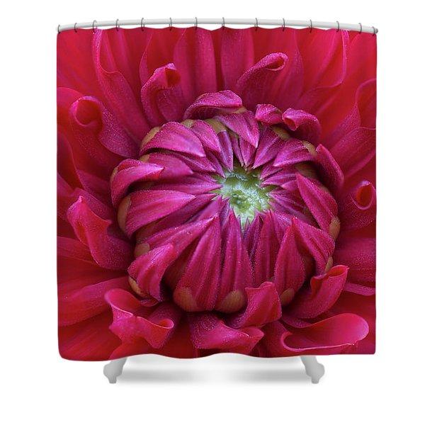 Dahlia Heart Shower Curtain