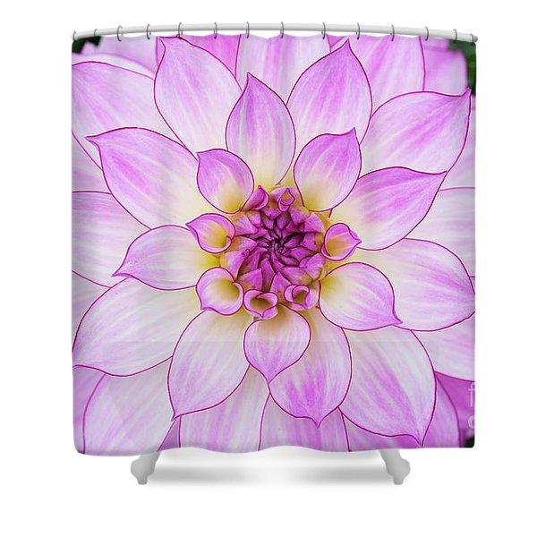 Dahlia Oriental Dream Shower Curtain