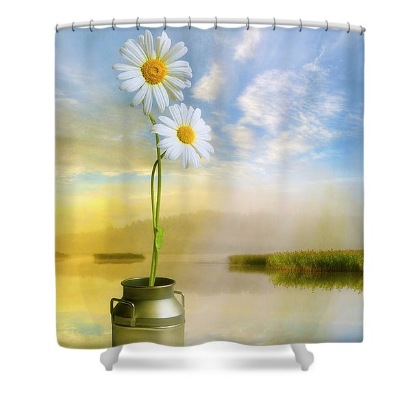Daisies In The Summer Morning Shower Curtain