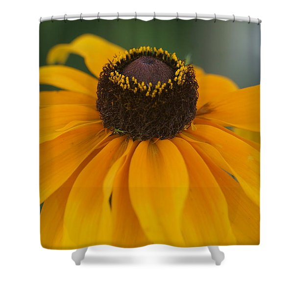 Daisy 2 Shower Curtain