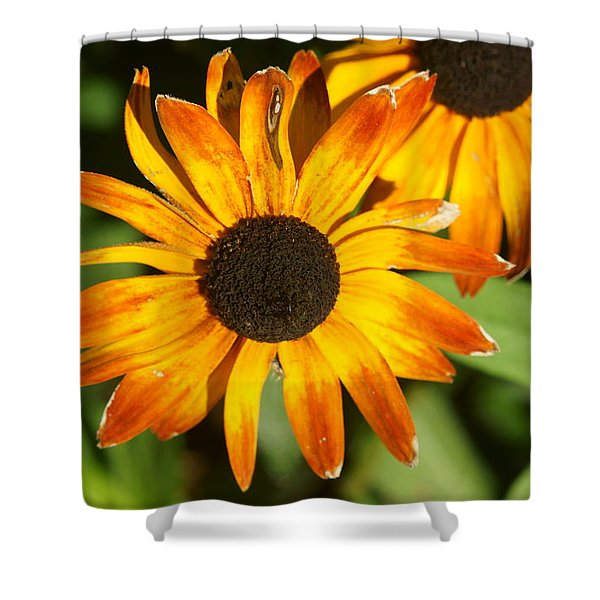 Daisy 8 Shower Curtain