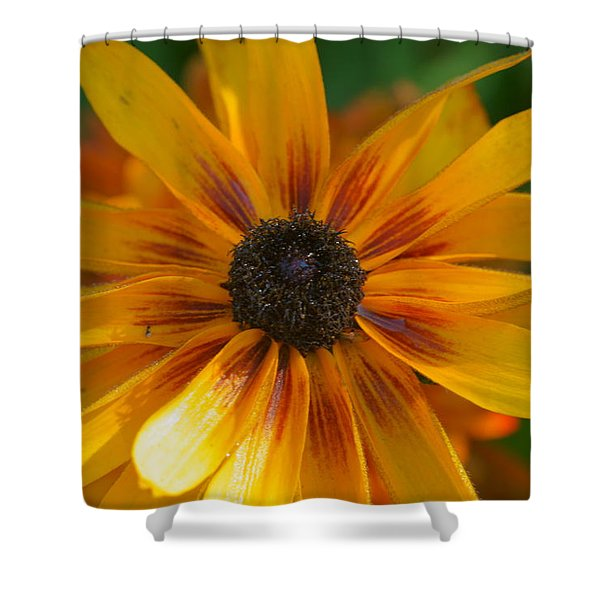 Daisy 9 Shower Curtain