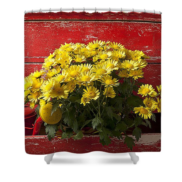 Daisy Plant In Drawers Shower Curtain