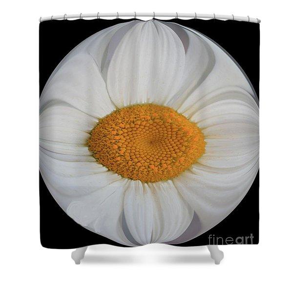 Daisy Sunny Side Up Shower Curtain