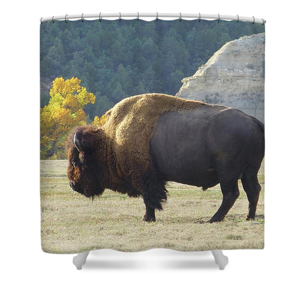 Shower Curtain featuring the photograph Dakota Badlands Majesty by Cris Fulton