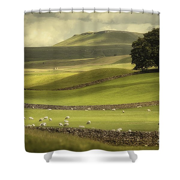 Dales Landscape Shower Curtain