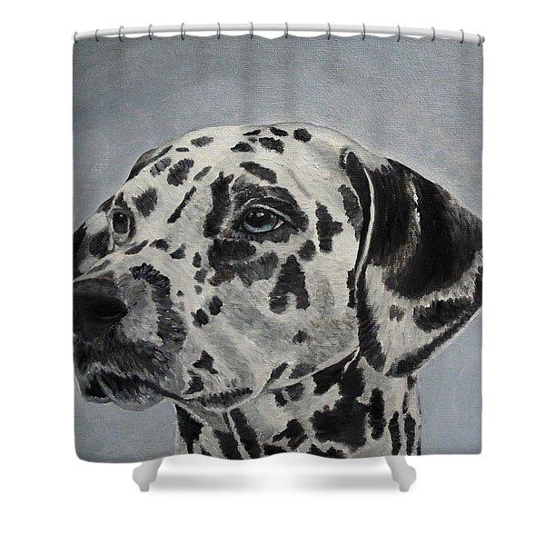 Dalmatian Portrait Shower Curtain