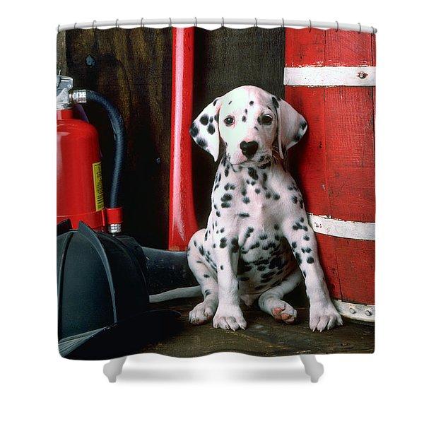 Dalmatian Puppy With Fireman's Helmet  Shower Curtain