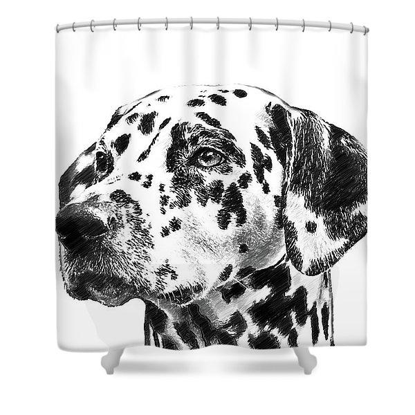 Dalmatians - Dwp765138 Shower Curtain