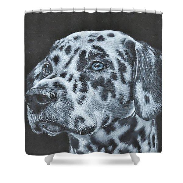 Dalmation Portrait Shower Curtain