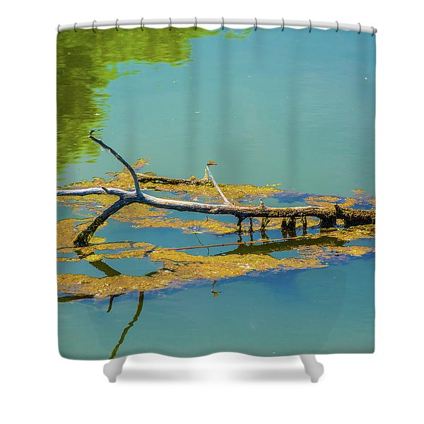 Damselfly On A Lake Shower Curtain
